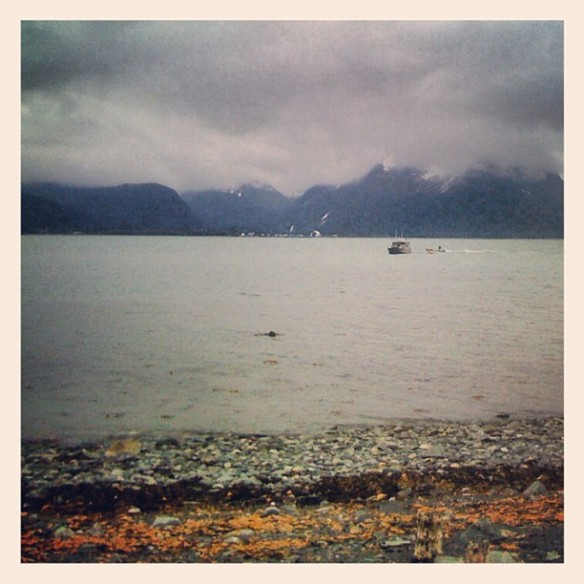 Memories of Resurrection Bay.