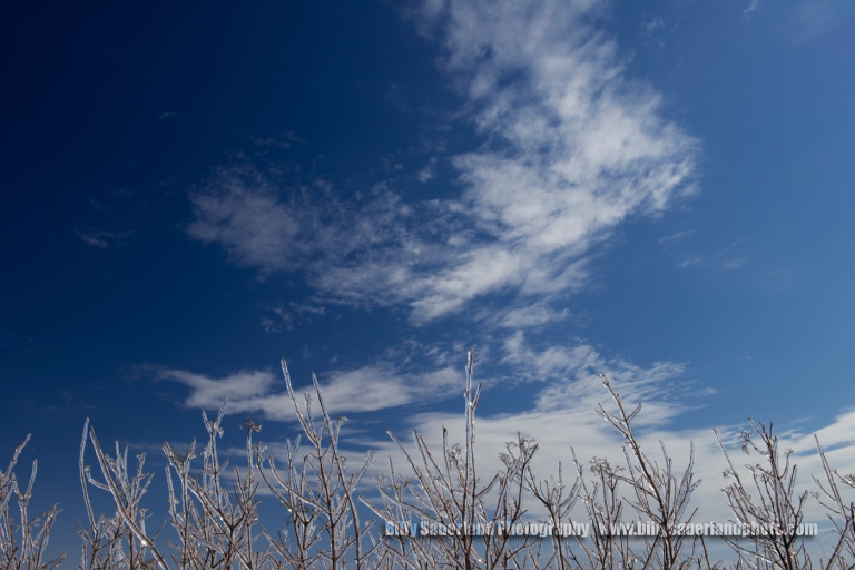 The day was cold, the sky was clear except for a few of these cotton candy clouds. All together the day was a success shooting in the Tall Grass Prairie Preserve.
