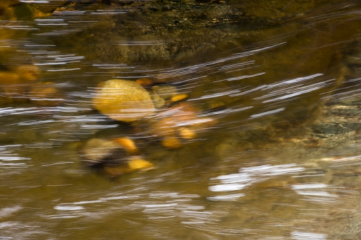 I captured this image while hiking along the middle fork of the Tuolumne River.